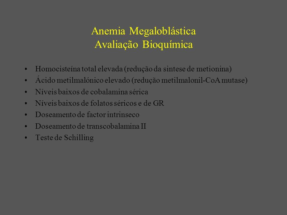 Anemia Megaloblástica Avaliação Bioquímica Homocisteína total elevada (redução da sintese de metionina) Ácido metilmalónico elevado (redução metilmalo