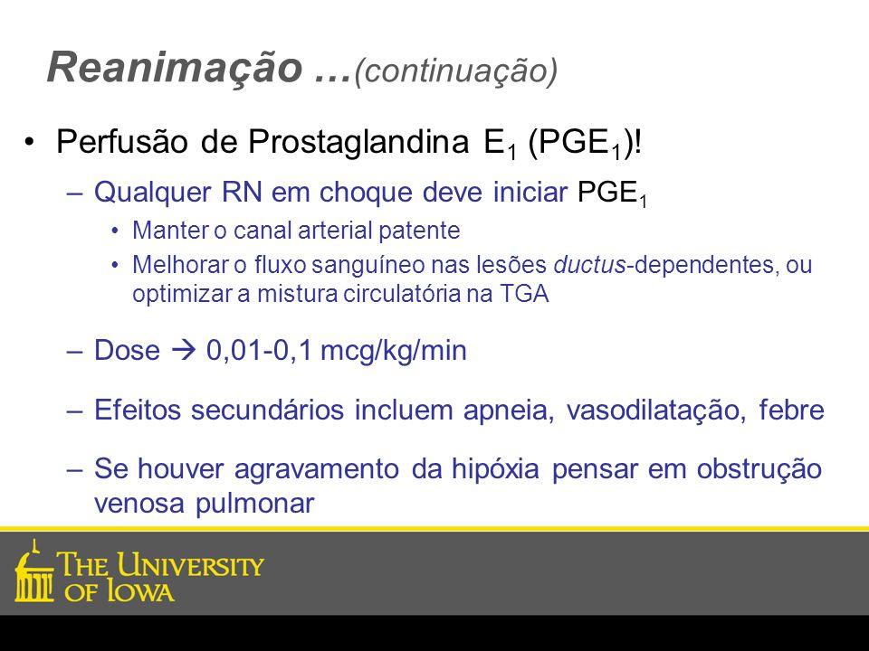 Reanimação … (continuação) Perfusão de Prostaglandina E 1 (PGE 1 )! –Qualquer RN em choque deve iniciar PGE 1 Manter o canal arterial patente Melhorar
