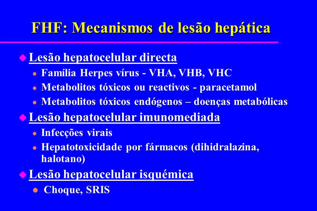 FHF: Mecanismos de lesão hepática u Lesão hepatocelular directa l Família Herpes vírus - VHA, VHB, VHC l Metabolitos tóxicos ou reactivos - paracetamo
