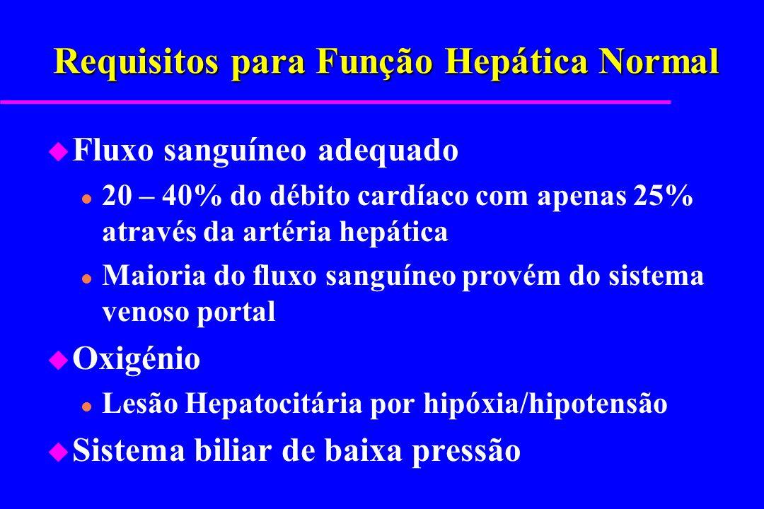 Requisitos para Função Hepática Normal u Fluxo sanguíneo adequado l 20 – 40% do débito cardíaco com apenas 25% através da artéria hepática l Maioria d