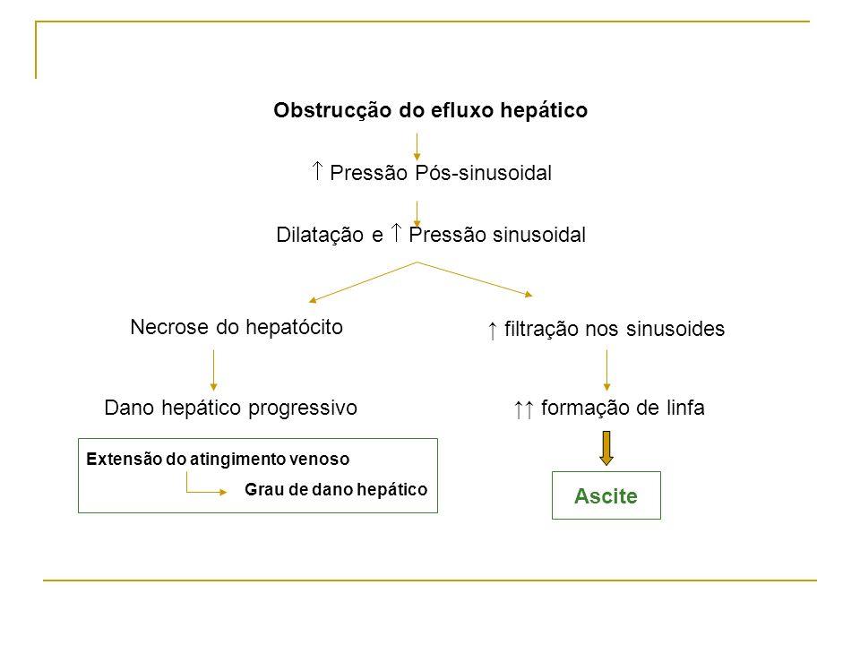 Obstrucção do efluxo hepático Pressão Pós-sinusoidal Dilatação e Pressão sinusoidal Necrose do hepatócito Dano hepático progressivo filtração nos sinu