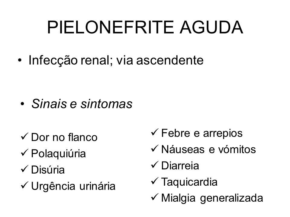 Classificação: –Infecções do tracto urinário superior Pielonefrites Abcessos renais e perinéfricos –Infecções do tracto urinário inferior Ureterite Ci