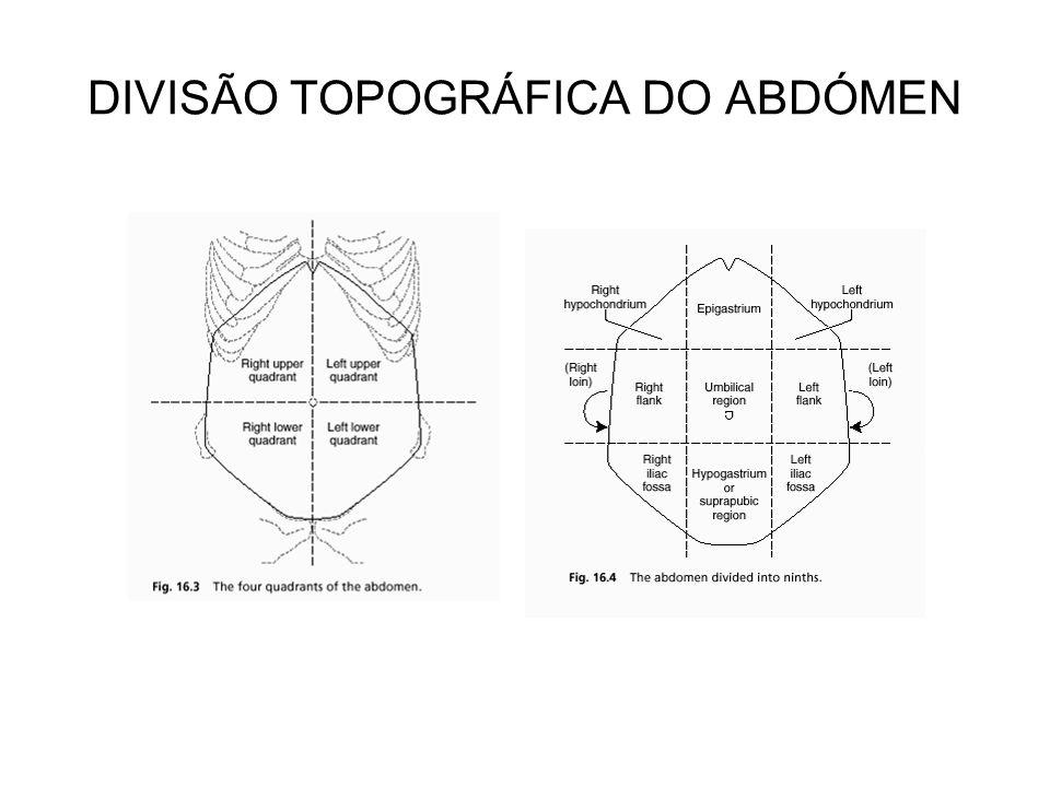 DIVISÃO TOPOGRÁFICA DO ABDÓMEN