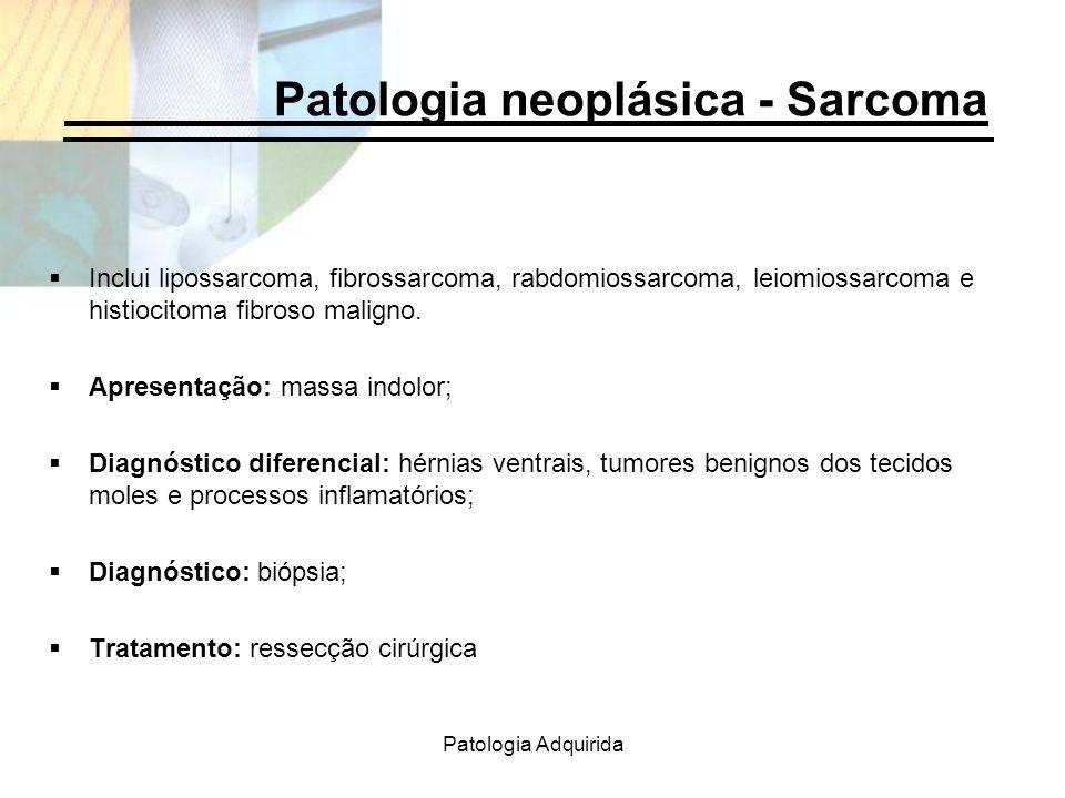 Patologia Adquirida Patologia neoplásica - Sarcoma Inclui lipossarcoma, fibrossarcoma, rabdomiossarcoma, leiomiossarcoma e histiocitoma fibroso malign