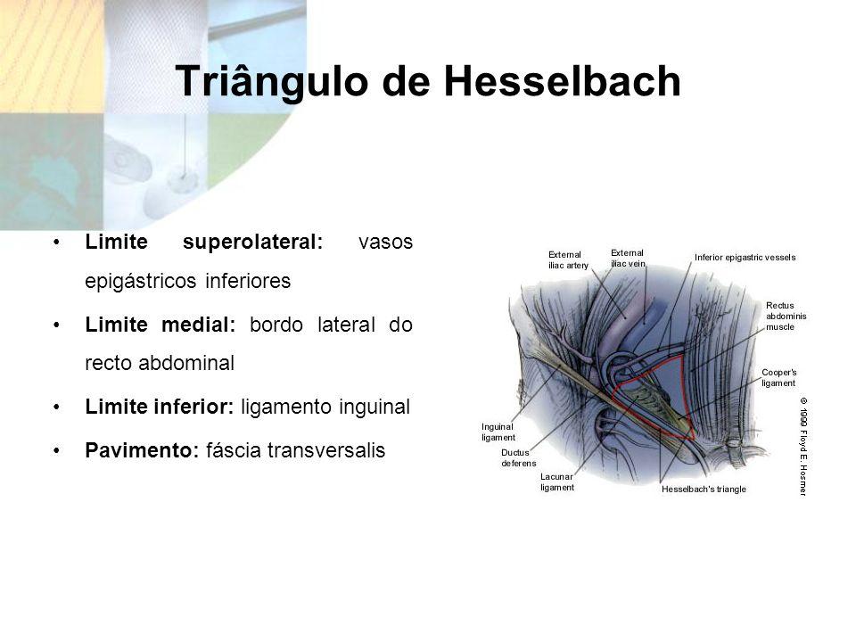 Triângulo de Hesselbach Limite superolateral: vasos epigástricos inferiores Limite medial: bordo lateral do recto abdominal Limite inferior: ligamento