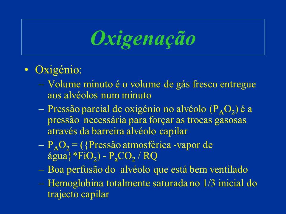 Oxigenação Oxigénio: –Volume minuto é o volume de gás fresco entregue aos alvéolos num minuto –Pressão parcial de oxigénio no alvéolo (P A O 2 ) é a p