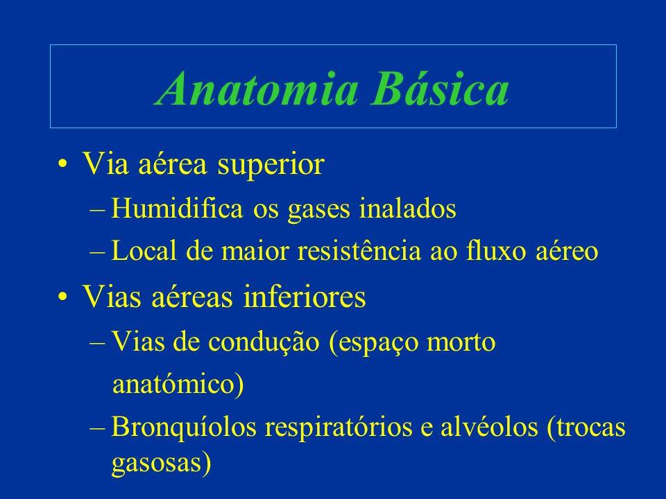 Anatomia Básica Via aérea superior –Humidifica os gases inalados –Local de maior resistência ao fluxo aéreo Vias aéreas inferiores –Vias de condução (