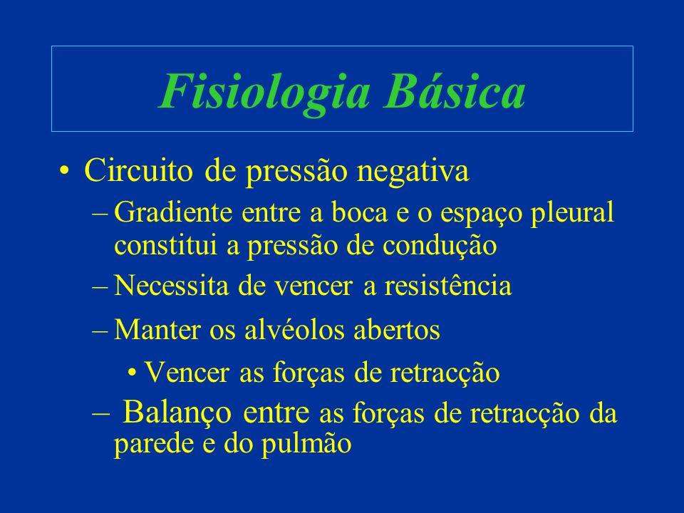 Fisiologia Básica http://www.biology.eku.edu/RITCHISO/301nãoes6.htm