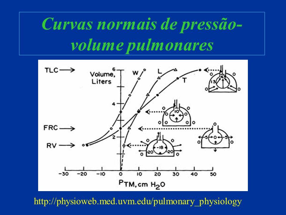 Parâmetros iniciais Pressão Limitada –FiO 2 –Frequência –Relação I:E –PEEP –PIP ou PAP Volume Limitado –FiO 2 –Frequência –Relação I:E –PEEP –Volume corrente Em ventiladores ciclados por tempo.