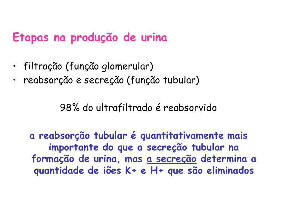 Valores laboratoriais urinários e séricos