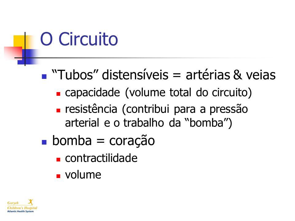 O Circuito Tubos distensíveis = artérias & veias capacidade (volume total do circuito) resistência (contribui para a pressão arterial e o trabalho da