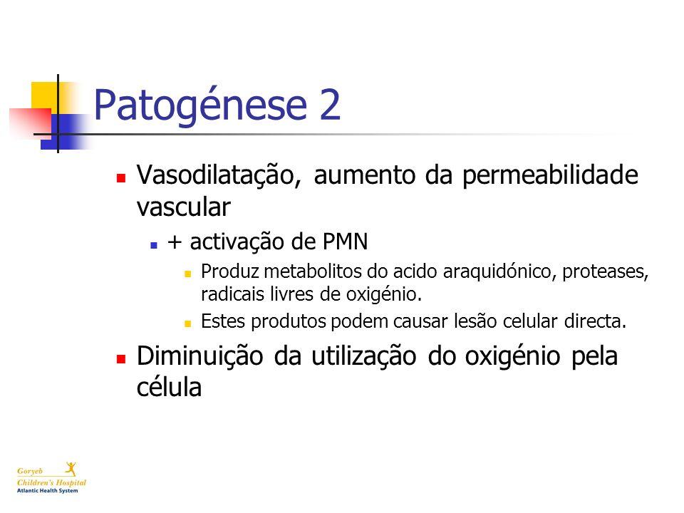 Patogénese 2 Vasodilatação, aumento da permeabilidade vascular + activação de PMN Produz metabolitos do acido araquidónico, proteases, radicais livres