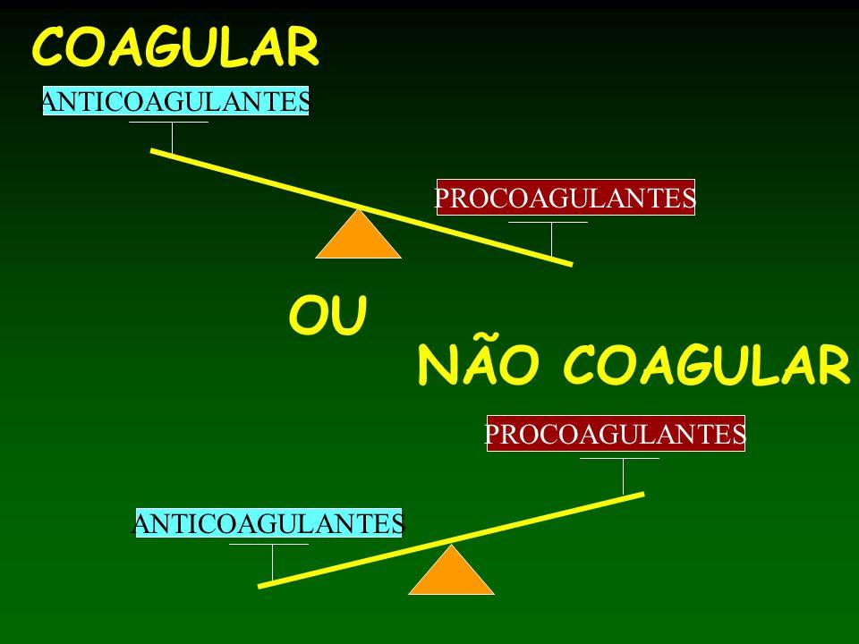 COAGULAR ANTICOAGULANTES PROCOAGULANTES OU NÃO COAGULAR ANTICOAGULANTES PROCOAGULANTES