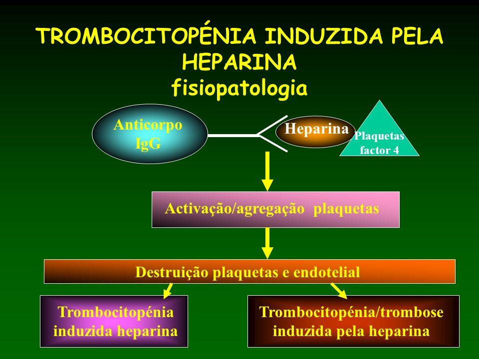 TROMBOCITOPÉNIA INDUZIDA PELA HEPARINA fisiopatologia Anticorpo IgG Heparina Plaquetas factor 4 Activação/agregação plaquetas Destruição plaquetas e endotelial Trombocitopénia induzida heparina Trombocitopénia/trombose induzida pela heparina