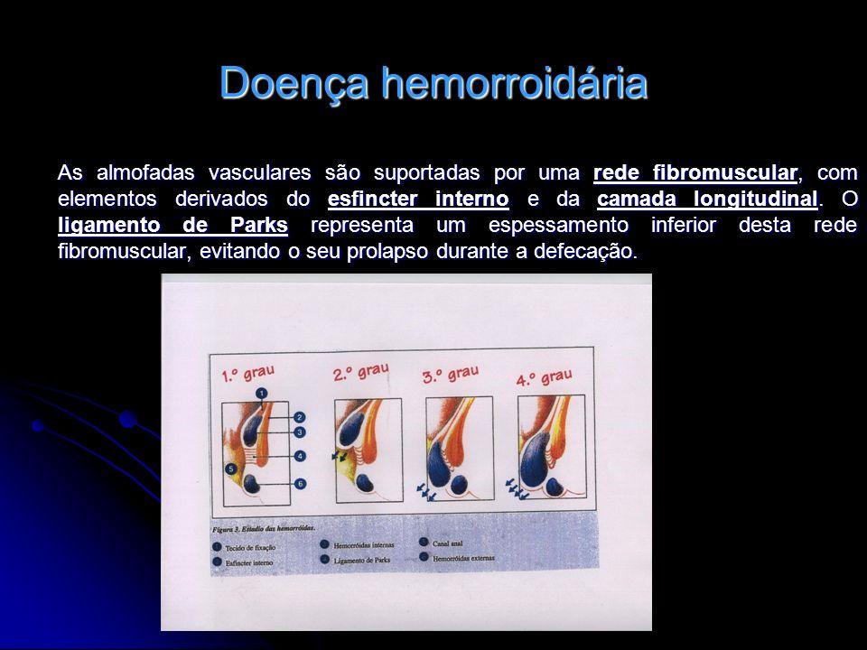 Doença hemorroidária As almofadas vasculares são suportadas por uma rede fibromuscular, com elementos derivados do esfincter interno e da camada longi