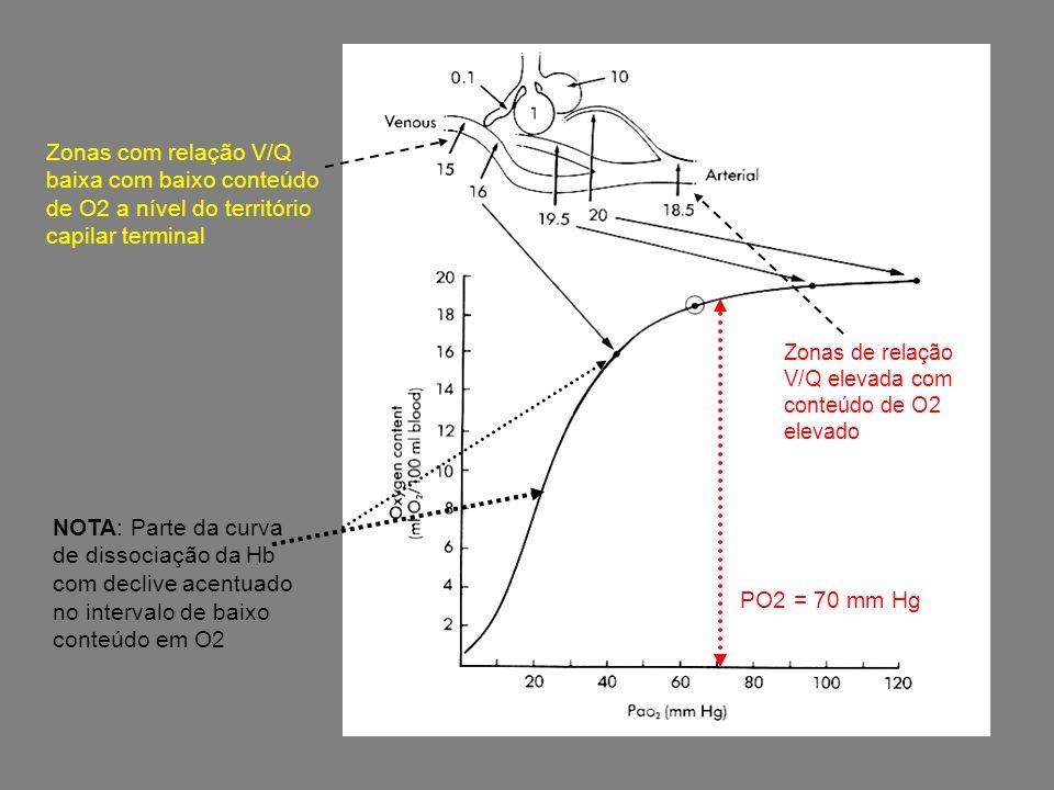 Zonas com relação V/Q baixa com baixo conteúdo de O2 a nível do território capilar terminal Zonas de relação V/Q elevada com conteúdo de O2 elevado PO