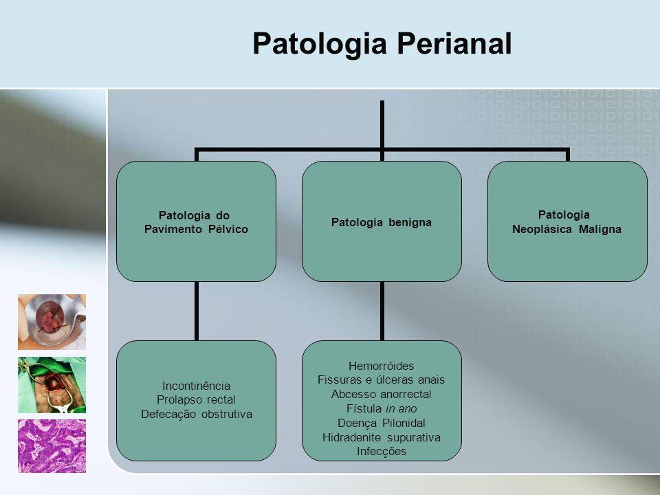 Patologia Perianal Patologia do Pavimento Pélvico Incontinência Prolapso rectal Defecação obstrutiva Patologia benigna Hemorróides Fissuras e úlceras