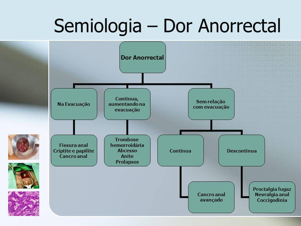Dor Anorrectal Na Evacuação Fissura anal Criptite e papilite Cancro anal Contínua, aumentando na evacuação Trombose hemorroidária Abcesso Anite Prolap