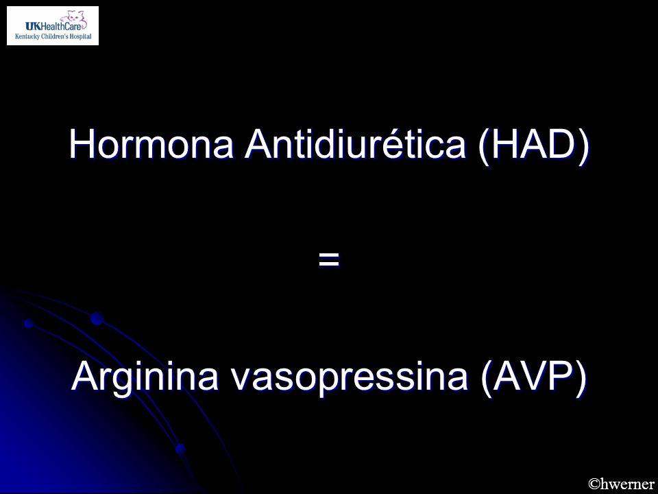 ©hwerner Hormona Antidiurética (HAD) = Arginina vasopressina (AVP)