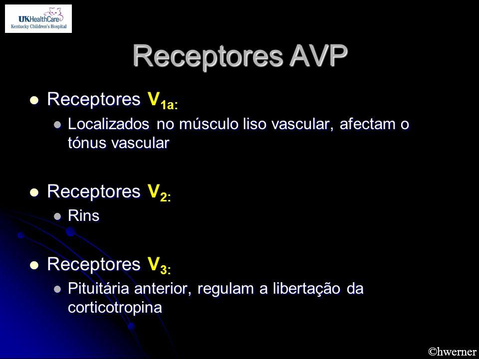 ©hwerner Receptores AVP Receptores Receptores V 1a: Localizados no músculo liso vascular, afectam o tónus vascular Localizados no músculo liso vascula
