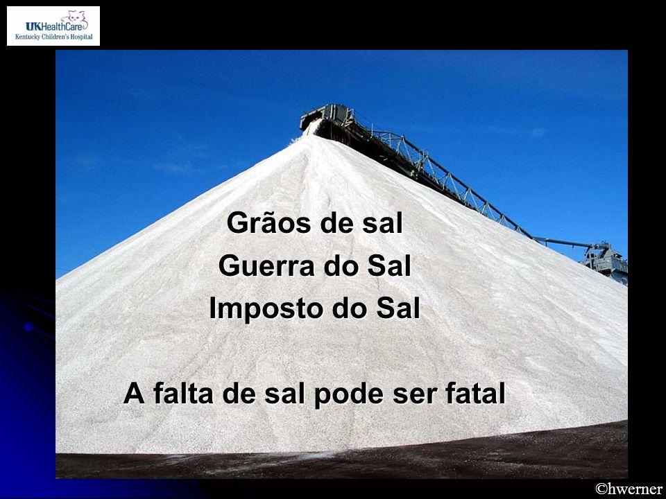 ©hwerner Grãos de sal Guerra do Sal Imposto do Sal A falta de sal pode ser fatal
