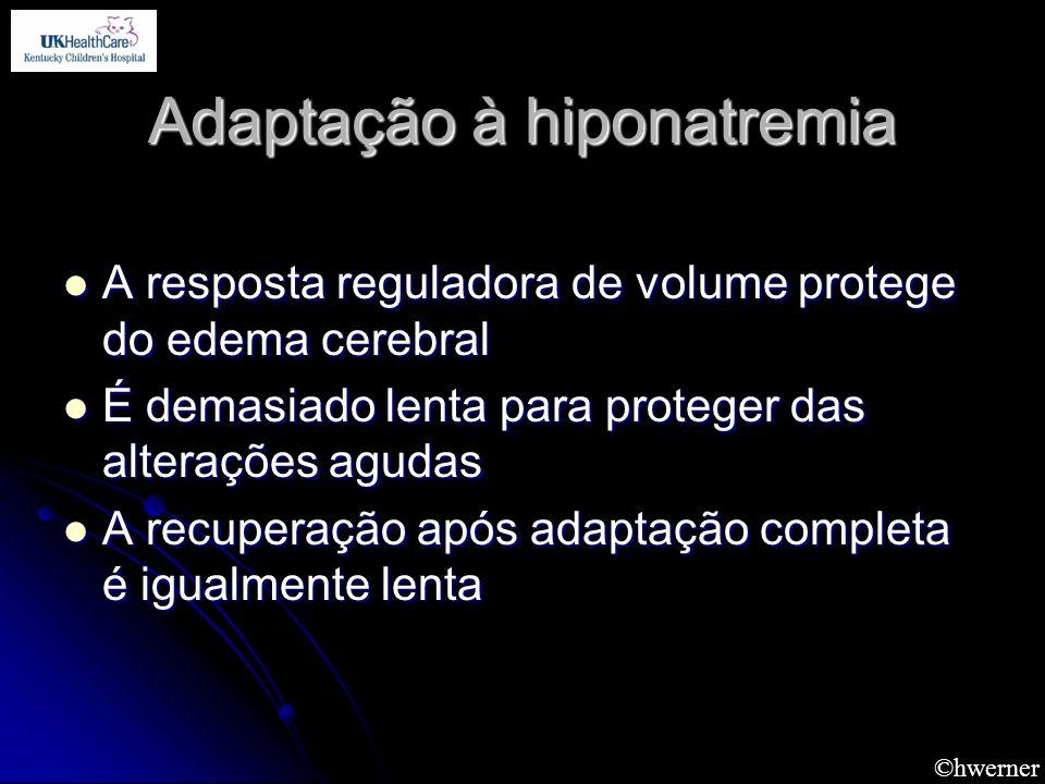 ©hwerner Adaptação à hiponatremia A resposta reguladora de volume protege do edema cerebral A resposta reguladora de volume protege do edema cerebral