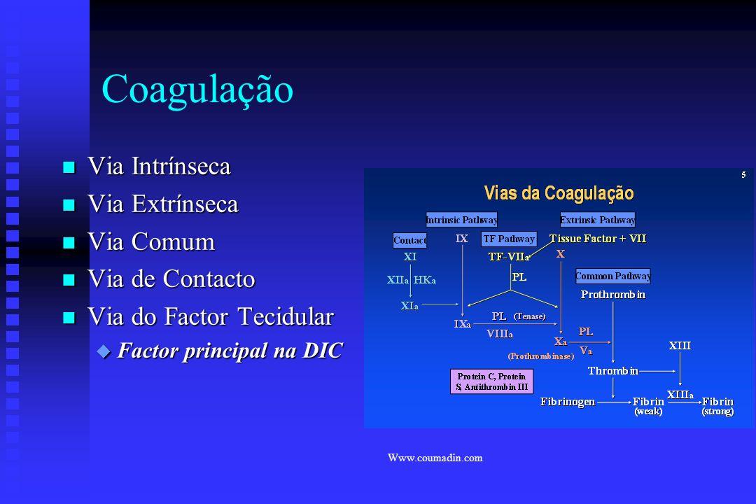 Endotélio Vascular n Endotélio Vascular expressa : u Trombomodulina u Activator do Plasminogénio Tecidular u Tromboplastina Tecidular/Factor Tecidular