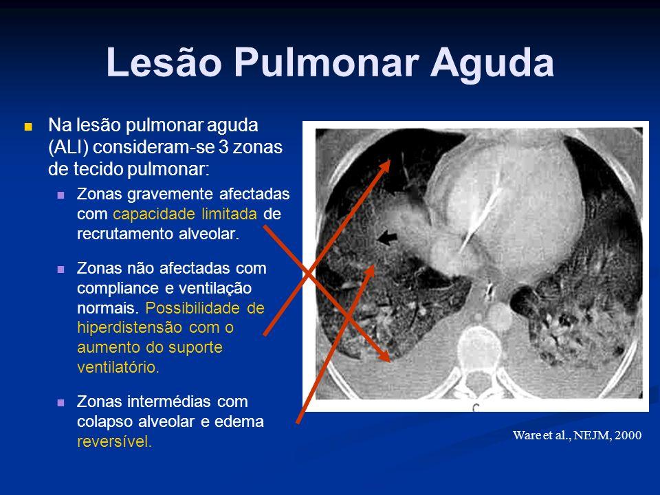 Lesão Pulmonar Aguda Na lesão pulmonar aguda (ALI) consideram-se 3 zonas de tecido pulmonar: Zonas gravemente afectadas com capacidade limitada de recrutamento alveolar.