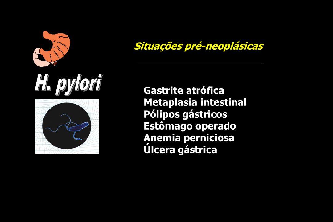 Situações pré-neoplásicas Gastrite atrófica Metaplasia intestinal Pólipos gástricos Estômago operado Anemia perniciosa Úlcera gástrica