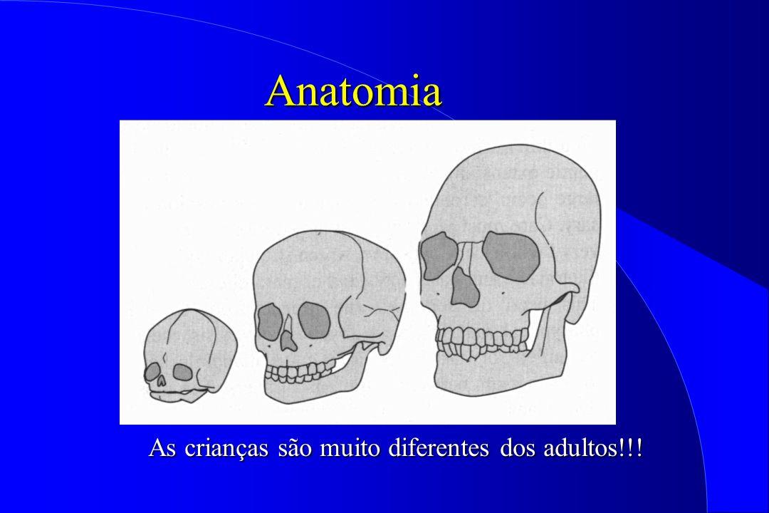 Anatomia As crianças são muito diferentes dos adultos!!!