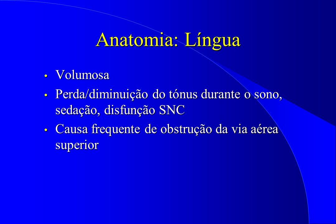 Anatomia: Língua Volumosa Volumosa Perda/diminuição do tónus durante o sono, sedação, disfunção SNC Perda/diminuição do tónus durante o sono, sedação,