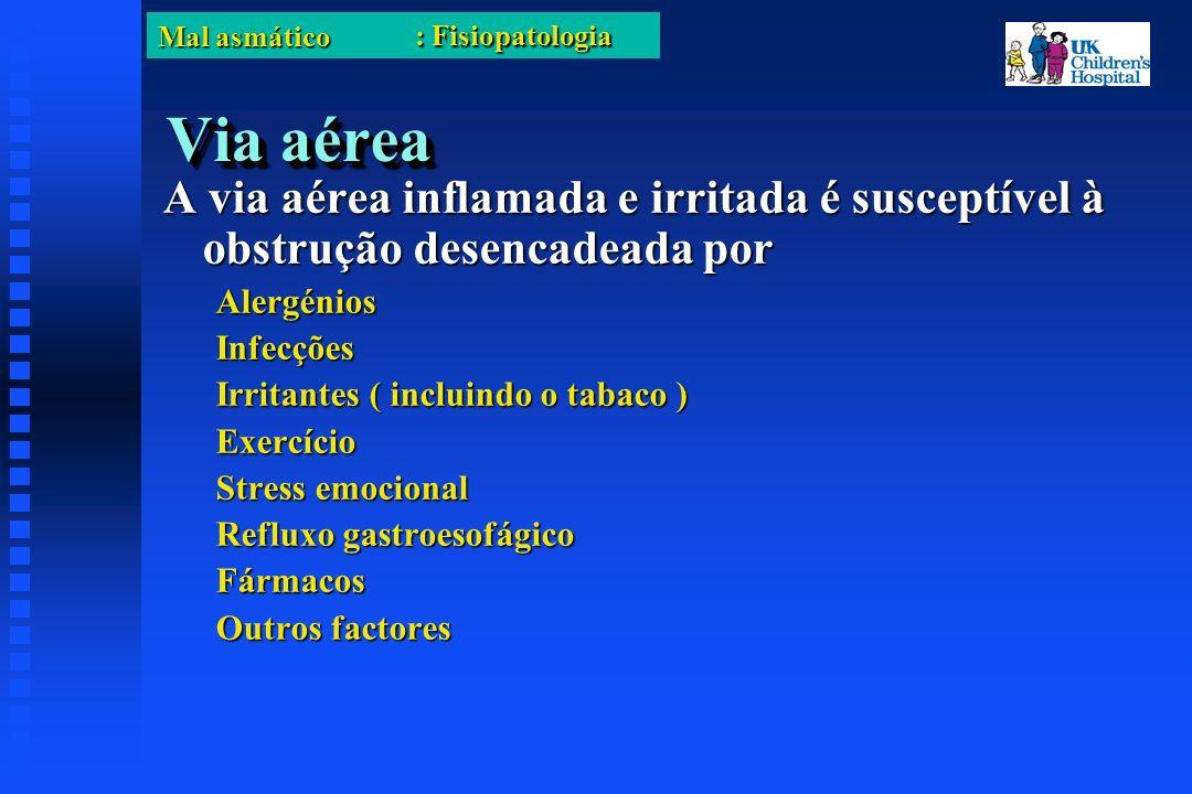 Mal asmático Via aérea A via aérea inflamada e irritada é susceptível à obstrução desencadeada por AlergéniosInfecções Irritantes ( incluindo o tabaco ) Exercício Stress emocional Refluxo gastroesofágico Fármacos Outros factores : Fisiopatologia