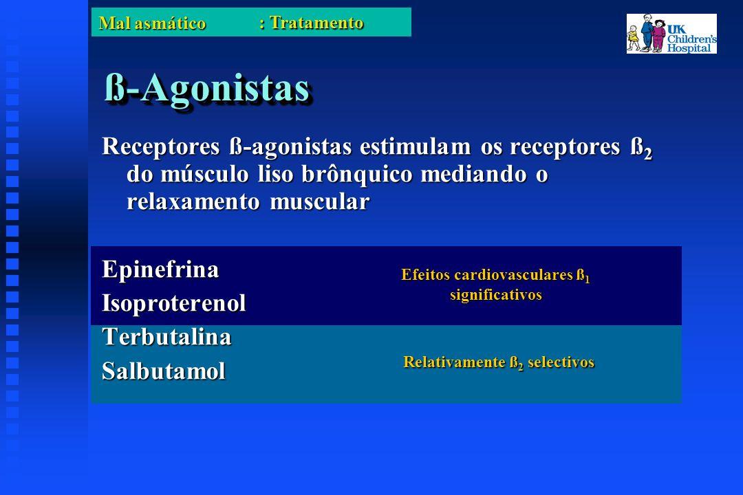 Mal asmático ß-Agonistasß-Agonistas Receptores ß-agonistas estimulam os receptores ß 2 do músculo liso brônquico mediando o relaxamento muscular EpinefrinaIsoproterenolTerbutalinaSalbutamol Relativamente ß 2 selectivos Efeitos cardiovasculares ß 1 significativos : Tratamento
