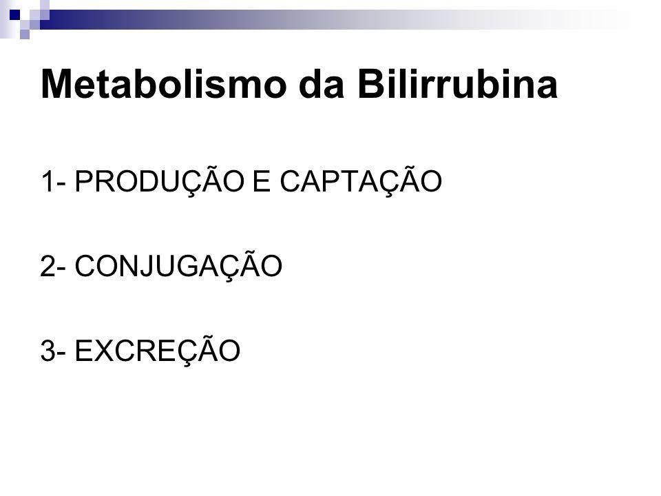 Produção da Bilirrubina Produto da degradação do heme (ferroprotoporfirina IX) Produção de bilirrubina: 250 – 300 mg/dia 80% destruição de eritrócitos senis 15% destruição de células eritróides imaturas 1-5% turnover das hemoproteínas (mioglobina,citocromos)