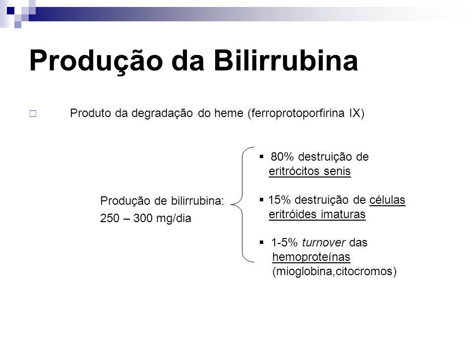 Produção da Bilirrubina Produto da degradação do heme (ferroprotoporfirina IX) Produção de bilirrubina: 250 – 300 mg/dia 80% destruição de eritrócitos