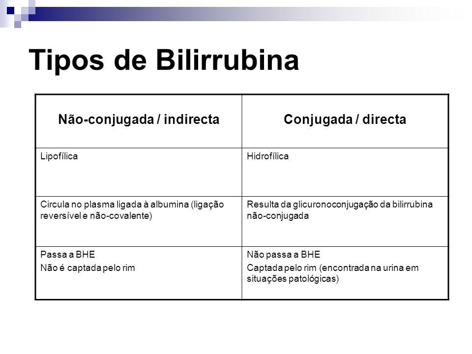 Tipos de Bilirrubina Não-conjugada / indirectaConjugada / directa LipofílicaHidrofílica Circula no plasma ligada à albumina (ligação reversível e não-