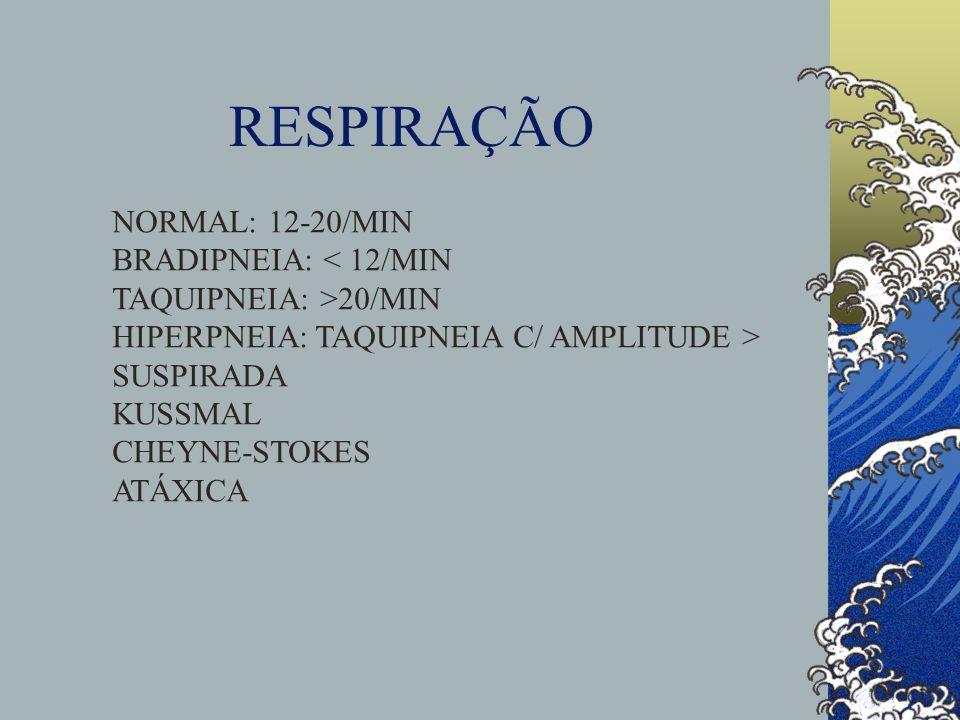 RESPIRAÇÃO NORMAL: 12-20/MIN BRADIPNEIA: < 12/MIN TAQUIPNEIA: >20/MIN HIPERPNEIA: TAQUIPNEIA C/ AMPLITUDE > SUSPIRADA KUSSMAL CHEYNE-STOKES ATÁXICA
