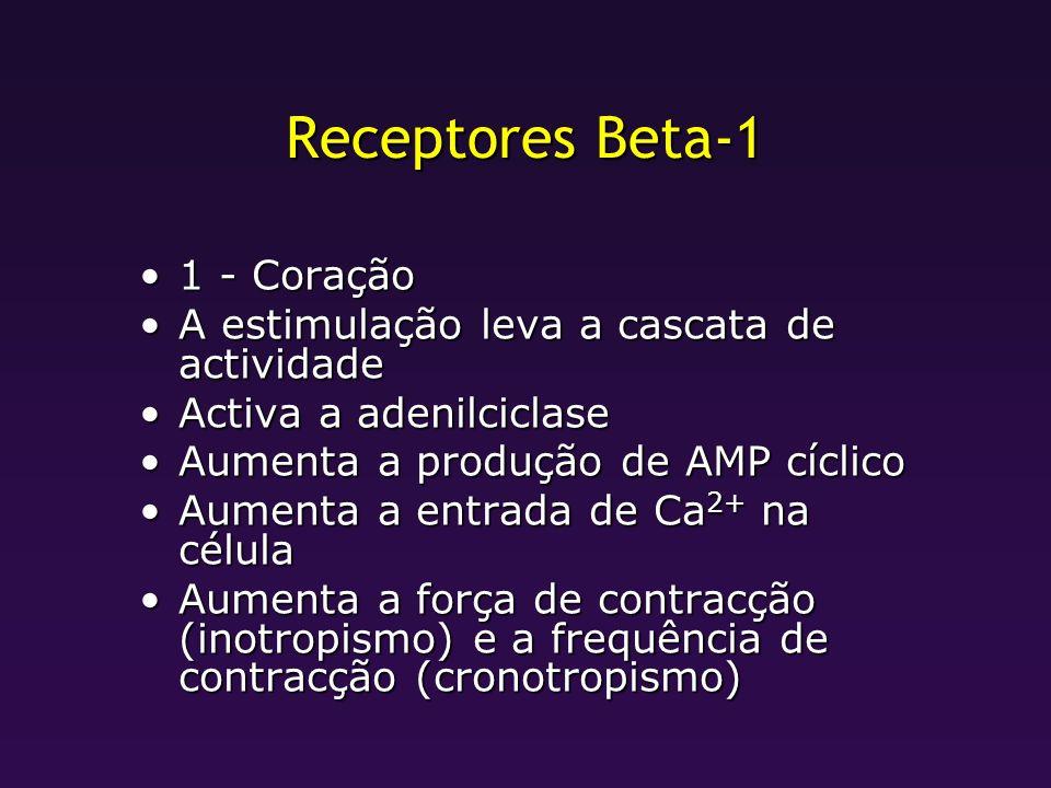 Receptores Beta-1 1 - Coração1 - Coração A estimulação leva a cascata de actividadeA estimulação leva a cascata de actividade Activa a adenilciclaseAc
