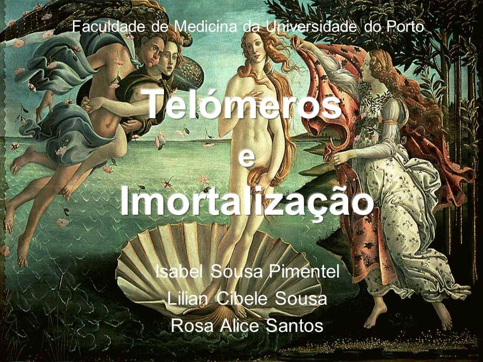 Isabel Sousa Pimentel Lilian Cibele Sousa Rosa Alice Santos Faculdade de Medicina da Universidade do Porto