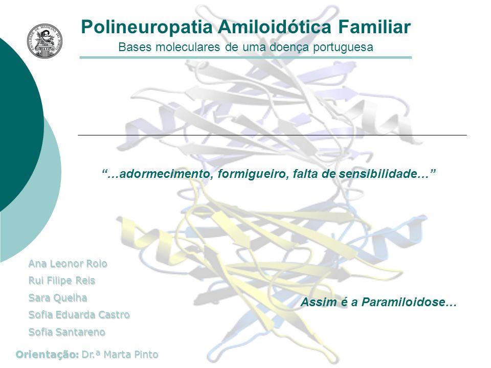 Alterações patológicas Polineuropatia Amiloidótica Familiar M.M.