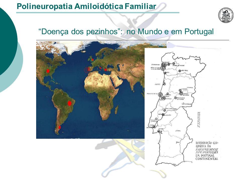 Diagnóstico Genético Pré-Implantório Técnica desenvolvida no Porto por investigadores portugueses Associação entre o Centro de Estudos de Infertilidade e Esterilidade (CEIE), o Centro de Estudos de Paramiloidose (CEP) o Centro de Estudos de Paramiloidose (CEP) uma clínica privada uma clínica privada Combinação de diversas áreas de biotecnologia fertilização in vitro, cultura de embriões e sua biopsia, cultura de embriões e sua biopsia, diagnóstico genético ao nível de uma única célula, diagnóstico genético ao nível de uma única célula, amplificação da região do gene com interesse por PCR, amplificação da região do gene com interesse por PCR, detecção da mutação por análise de restrição enzimática detecção da mutação por análise de restrição enzimática Polineuropatia Amiloidótica Familiar