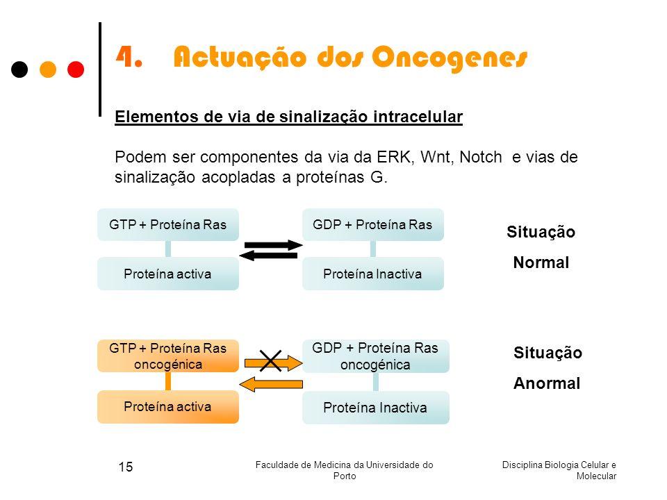 Disciplina Biologia Celular e Molecular Faculdade de Medicina da Universidade do Porto 15 4.Actuação dos Oncogenes Elementos de via de sinalização int