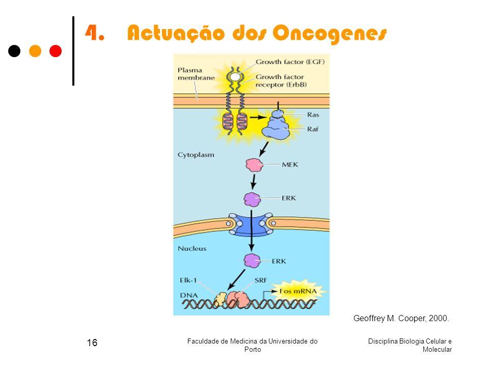 Disciplina Biologia Celular e Molecular Faculdade de Medicina da Universidade do Porto 16 4.Actuação dos Oncogenes Geoffrey M. Cooper, 2000.