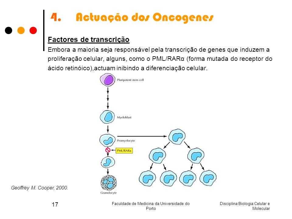 Disciplina Biologia Celular e Molecular Faculdade de Medicina da Universidade do Porto 17 4.Actuação dos Oncogenes Factores de transcrição Embora a ma