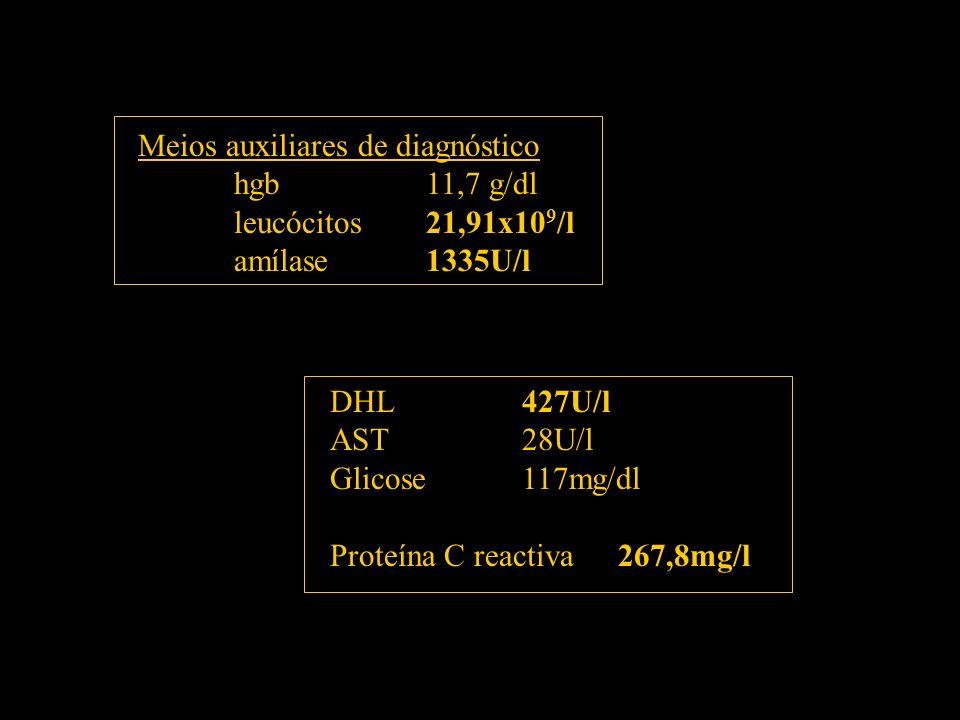 Meios auxiliares de diagnóstico hgb11,7 g/dl leucócitos21,91x10 9 /l amílase1335U/l DHL427U/l AST28U/l Glicose117mg/dl Proteína C reactiva267,8mg/l