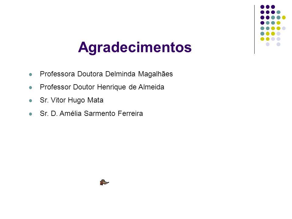 Agradecimentos Professora Doutora Delminda Magalhães Professor Doutor Henrique de Almeida Sr. Vitor Hugo Mata Sr. D. Amélia Sarmento Ferreira