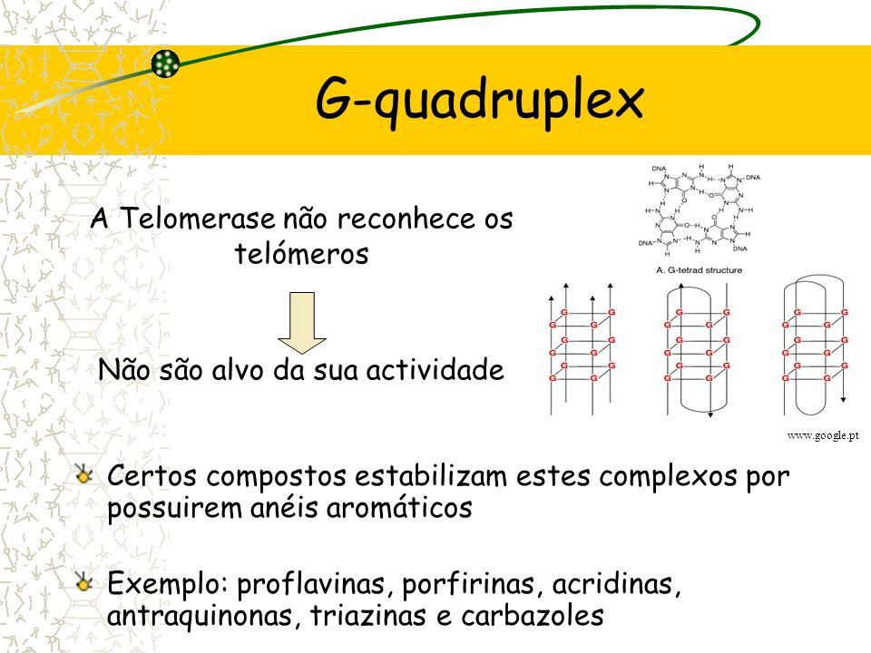 G-quadruplex Organização espacial das cadeias simples dos telómeros (não convencional) Ligação de 4 guaninas Ligações de hidrogénio non-Watson-Crick w