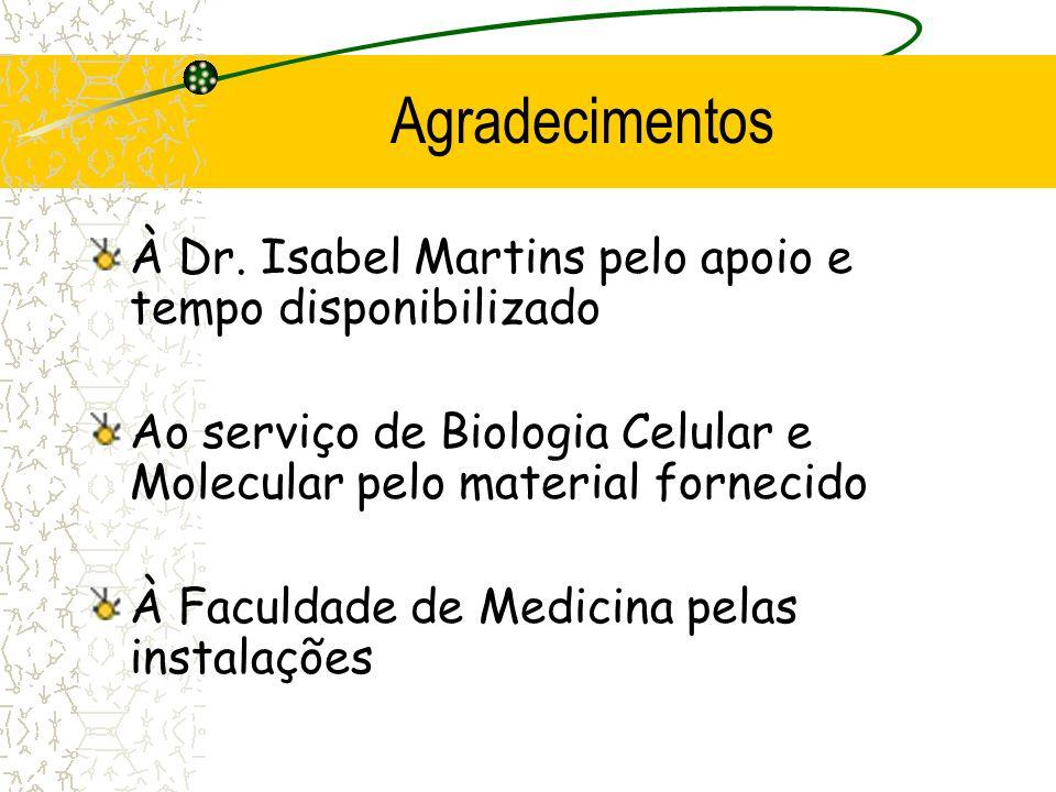 Bibliografia Livros: Cooper, G.; Hausman, R.; The Cell; 3ª edição, 2004, Sinauer Azevedo, C.; Biologia Molecular e Celular; 3ª Edição; Lidel; 1999 Alb