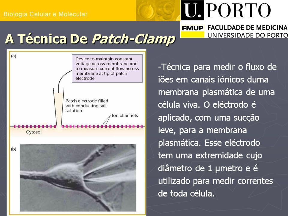 A Técnica De Patch-Clamp -Técnica para medir o fluxo de iões em canais iónicos duma membrana plasmática de uma célula viva. O eléctrodo é aplicado, co