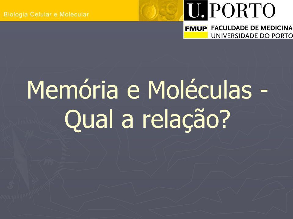 Memória e Moléculas - Qual a relação?